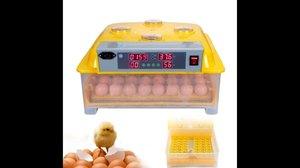 Äggkläckningsmaskin 8-48